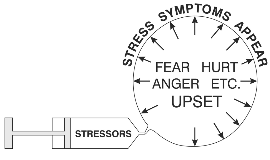 stress-the-mind-belief-systems-and-mental-blocks3